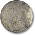 Morgan Dollars 1921 USD